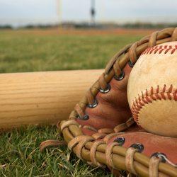 Morris Baseball & Softball Center - Baseball Fields - 221 US 41