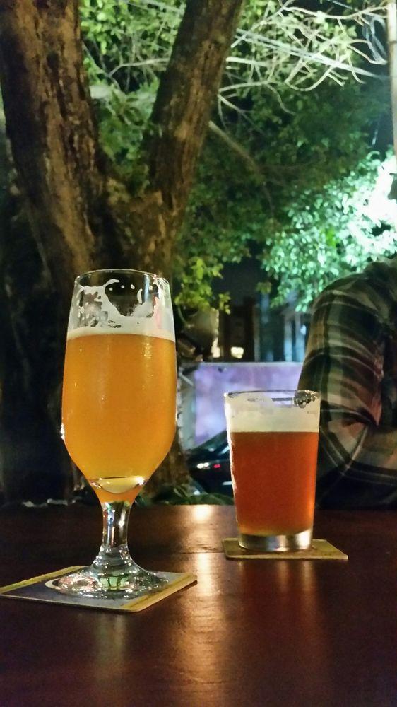 De Bruer 101 Cervejas Brasileiras