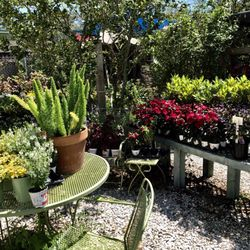 Photo Of Earl S Garden Nursery Tampa Fl United States