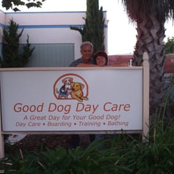 Good Dog Day Care Hayward