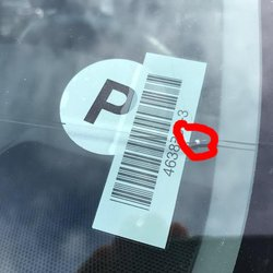 Payless Car Rental Phone