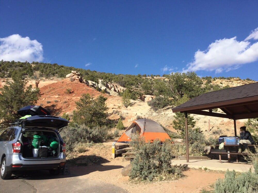 Escalante Petrified Forest State Park: 710 N Reservoir Rd, Escalante, UT
