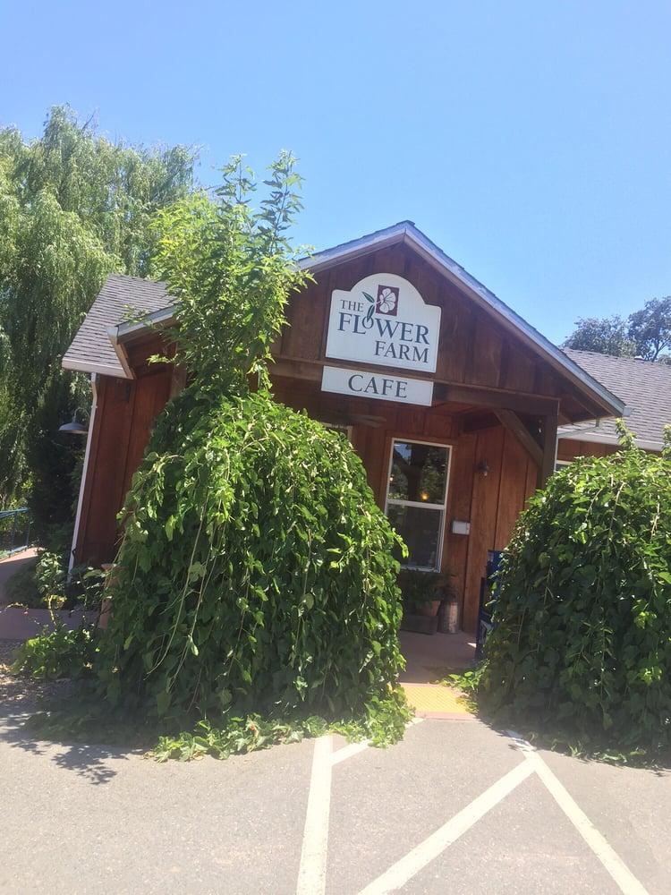 Flower Farm Cafe Loomis Ca