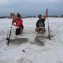 Photo Of Off The Beach Shark Fishing Trips Panama City Fl United