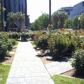 Photo Of International World Peace Rose Gardens   Sacramento, CA, United  States