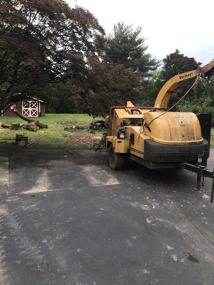 MML Tree Service: 27 Sleepy Hollow Ln, Belle Mead, NJ