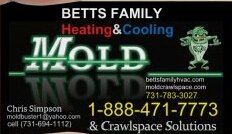 Mold Crawlspace Solutions: Medina, TN