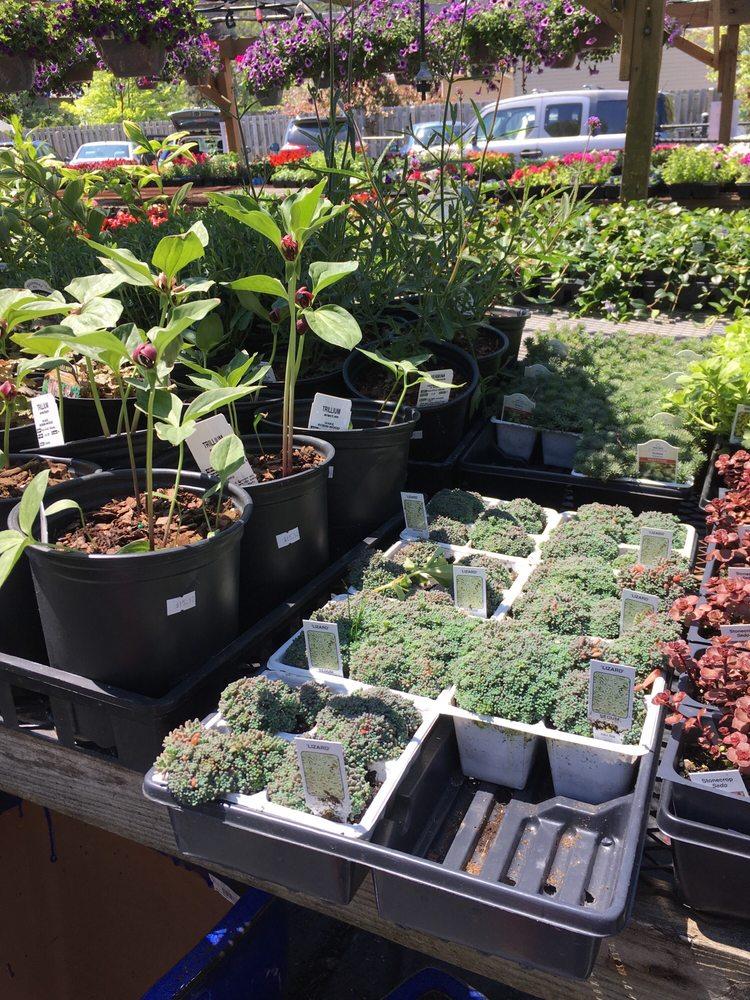 Photo of Highland Landscape Supply - Cleveland, OH, United States - Highland Landscape Supply - Florists - 5860 Wilson Mills Rd