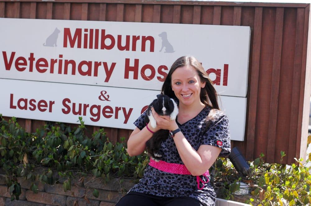 Millburn Veterinary Hospital & Laser Surgery Center