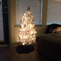 photo of walmart brandon fl united states tree at dusk went - Walmart Closed Christmas