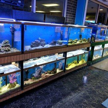 Birds beasts pet shop 20 photos 21 reviews pet for Fish pet shop