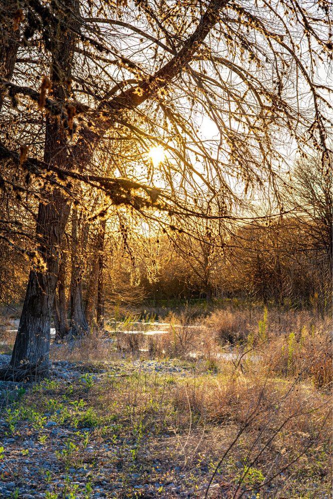 Frio Pecan Farm Log Cabins & Rv Park: Leakey, TX