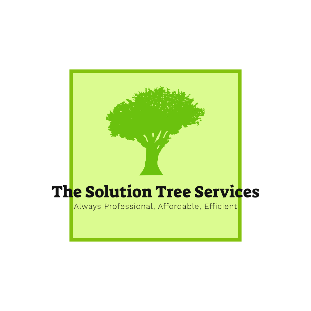 The Solution Tree Service