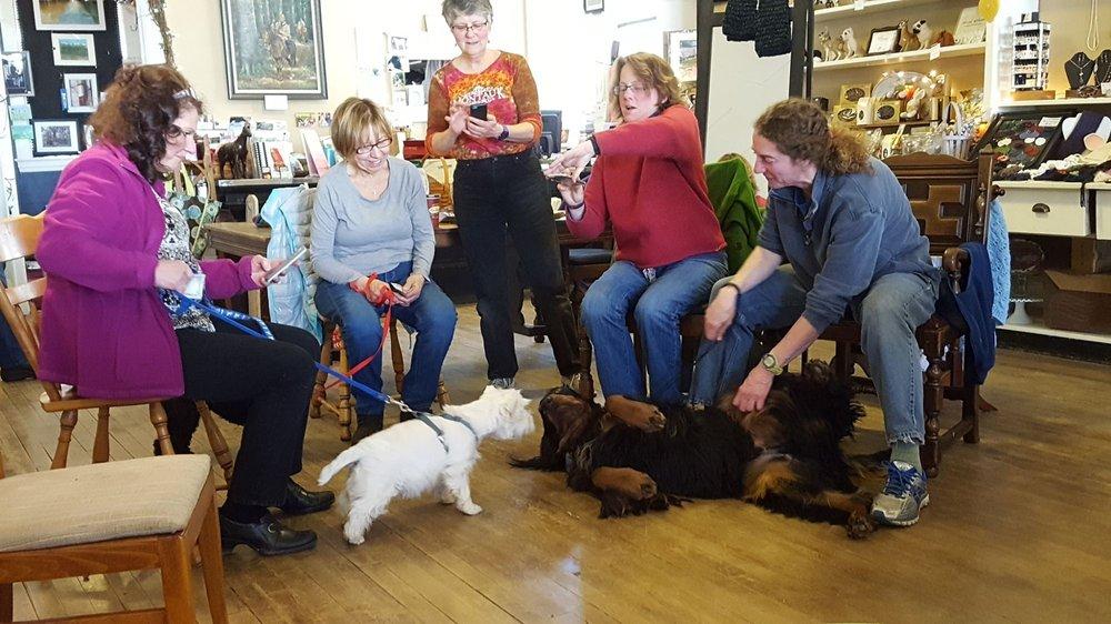 Harmony Dog Training: 8466 Mountain Rd, Gasport, NY