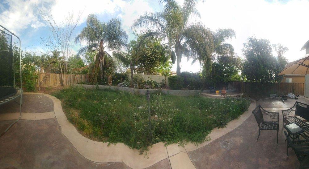 Viride Garden: Patterson, CA