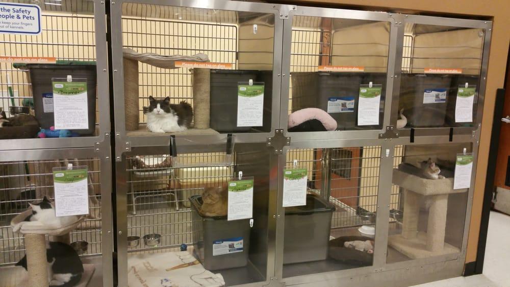 PetSmart: 3800 Beltline Rd, Addison, TX