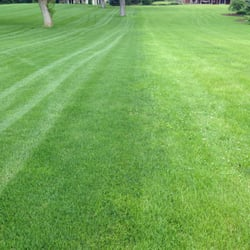 Photo Of Weiss Lawn Care Inc Winfield Il United States Experience The