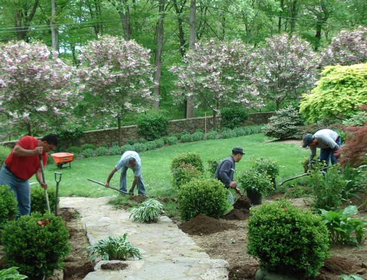 Estate Landscaping Services: Catharpin, VA