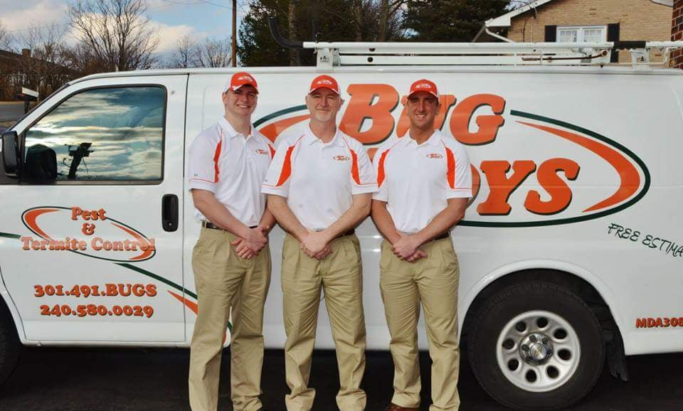 Bug Boys Pest Control: 80 Hillsborough Ter, Ridgeley, WV