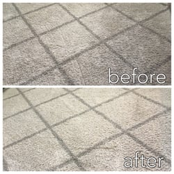 Alum Rock Carpet Cleaning - 20 Photos - Carpet Cleaning ...