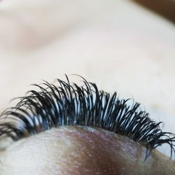 55234474e16 Photo of Lisa Eyelash Extensions - Naperville, IL, United States. Eyelash  Extension