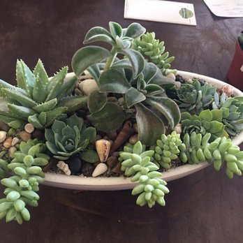 Superb Photo Of Green Gardens Nursery   San Diego, CA, United States