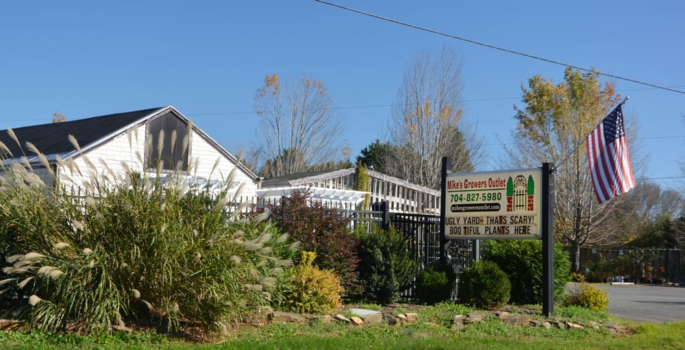 Mikes Growers Outlet: 1485 S Highway 16, Stanley, NC