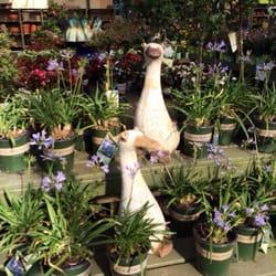 Photo Of Pike Nurseries   Charlotte, NC, United States. Plants Are  Displayed Very