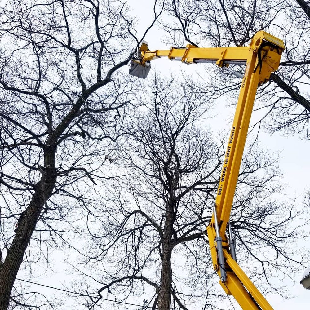 Hoppe Tree Service: 1813 S 73rd St, West Allis, WI
