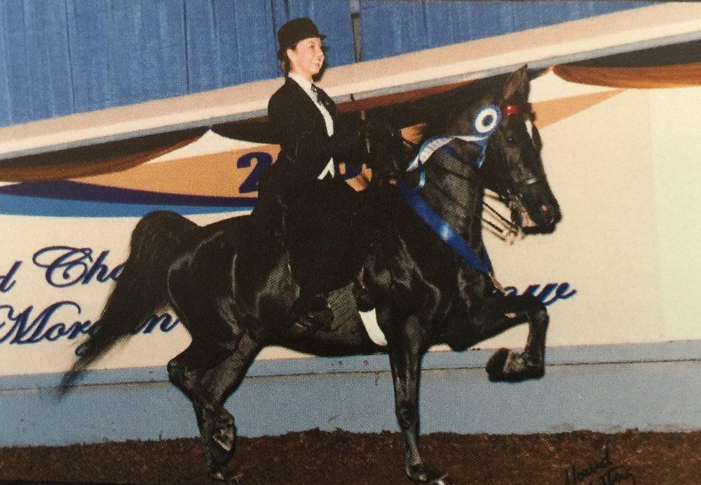 Photo of Wichita Riding Academy: Derby, KS