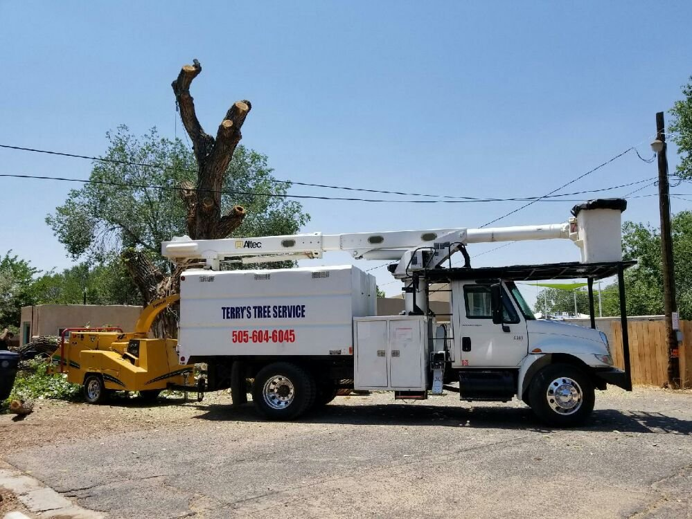 Terry's Tree Service: Los Lunas, NM