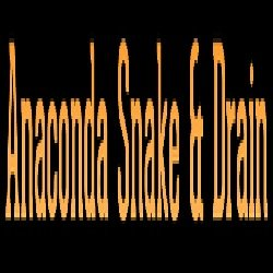 Anaconda Snake & Drain: 5760 S Mesquite Tree Ln, Hereford, AZ