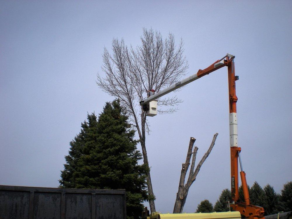 Storwick & Hope Tree and Landscape Professionals: Moses Lake, WA