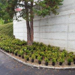 Evergreen Gartenbau cultira sa gartenbau 21 photos gardeners via santeri 11 ilanz