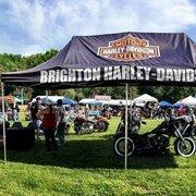brighton harley davidson - motorcycle dealers - 5942 whitmore lake
