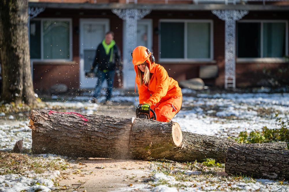 Harrison's Pro Tree Service: Franklin, OH