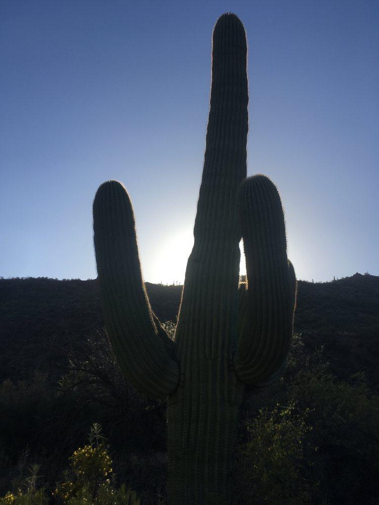 Canyon Creek Ranch: 22100 E Tara Springs Rd, Black Canyon City, AZ