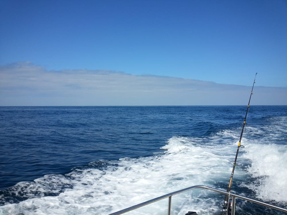 Fish taxi sportfishing boat charters 315 harbor dr s for Oceanside fishing charters