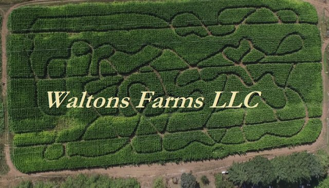 Walton Farms LLC: 1617 NE 267th Ave, Vancouver, WA