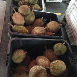 Leng durians greengrocers jalan anson georgetown penang photo of leng durians georgetown penang malaysia ccuart Image collections