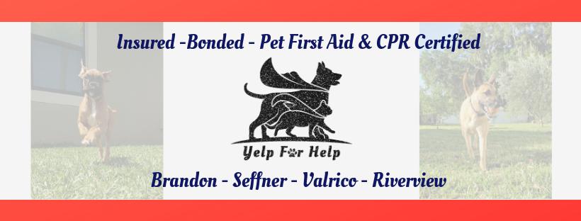 Yelp for Help: 224 Elrod Dr, Brandon, FL