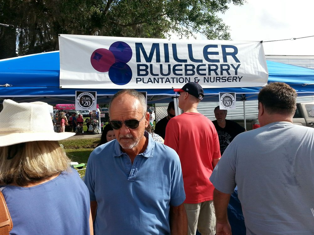 Miller Blueberry Plantation and Nursery: 394 S County Rd 315 S, Interlachen, FL