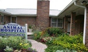 Ellijay Animal Hospital