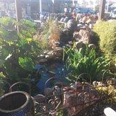 Green Thumb Nursery - San Marcos - 291 Photos & 103 Reviews