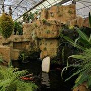 Best Of Yelp Torrance U2013 Nurseries U0026 Gardening. Rainforest Flora