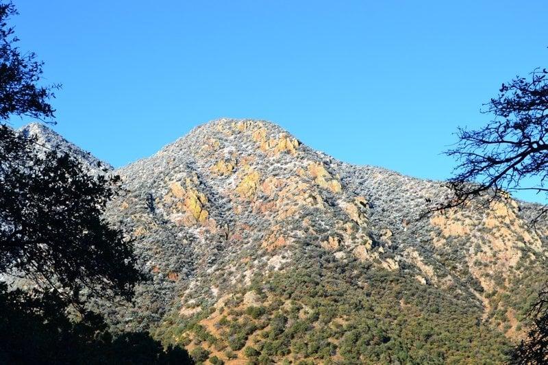 Bog Springs Campground: Coronado National Forest, Madera Canyon, AZ