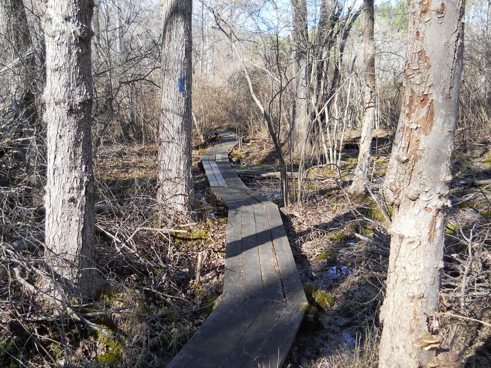 Allen Creek Nature Preserve: Towhee Ct, Nellysford, VA