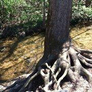 Sequiota Park 13 Billeder Parker 3500 S Lone Pine