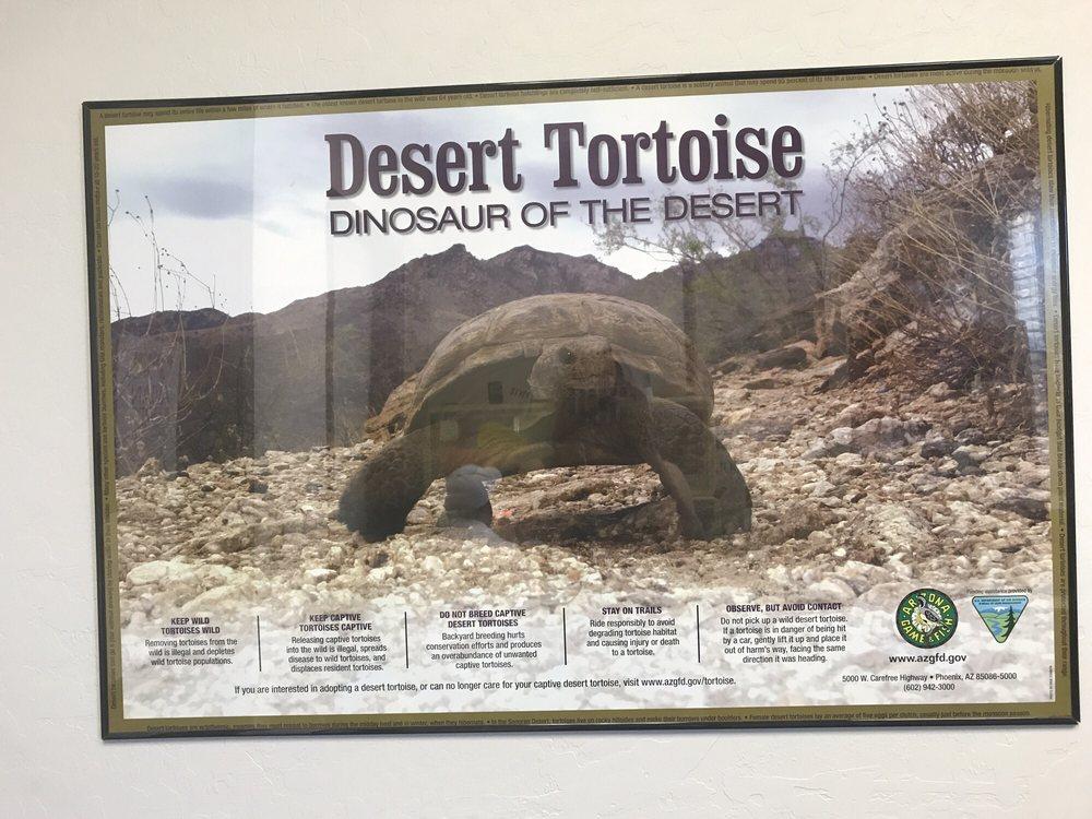 Avian & Exotic Animal Clinic of Arizona