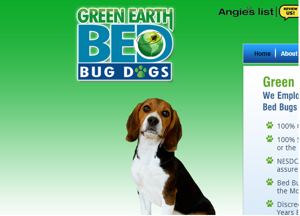 Green Earth Bed Bug Dogs Closed Pest Control Chelsea New York